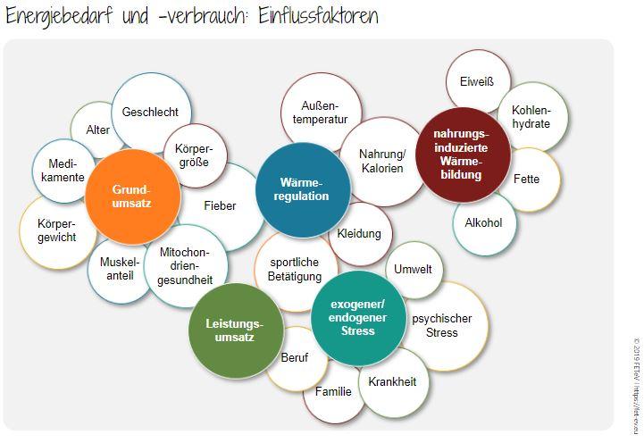 Energiebedarf_GesundheitsManufaktur