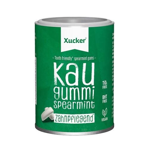 Xylit-Kaugummis Spearmint, Fruchtmix oder Zimt