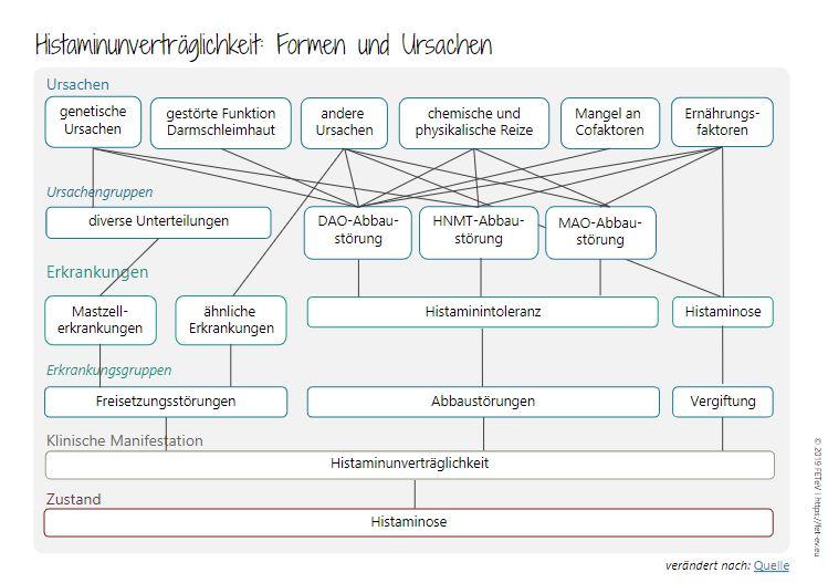 Histamin_Faktoren