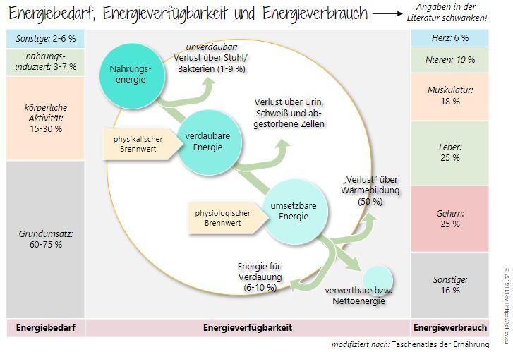 Energie_GesundheitsManufakturyhE4TwuoZwFCd