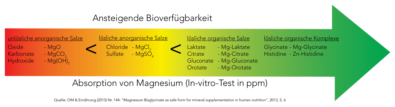Bioverfuegbarkeit_Magnesium